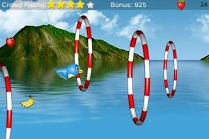Screenshot of Stunt Bird