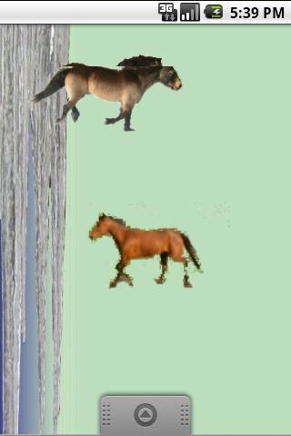 Live Hest Paper BETATEST