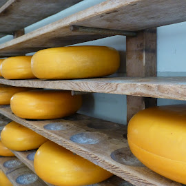 Dutch Cheese by Patricia Vleeming - Food & Drink Meats & Cheeses