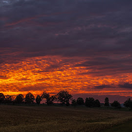 Sky on fire by Brian Curnel - Landscapes Cloud Formations ( beautiful sunset, cloudscape, landscape, dynamic clouds, golden sunset )