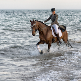 Riding at the beach by Erik Kunddahl - Sports & Fitness Other Sports ( ride, equine, equipage, horse, nikon )