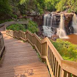 Blackwater Falls by Nicolas Raymond - City,  Street & Park  Vistas ( stream, america, waterscape, waterfall, states, wide-angle, landscape, usa, stairs, stairway, nature, foliage, long exposure, virginia, streaming, water, united, hdr, park, stairwell, blackwater, forest, steps, scenic, woods, wide angle, staircase, falls, trees, scene, scenery, west,  )
