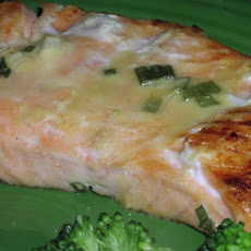 Grilled Salmon With Mustard Orange Marinade