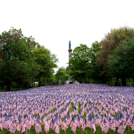 Boston Memorial day 2014 by Vladislav Stakev - City,  Street & Park  City Parks ( boston memorial day 2014 )