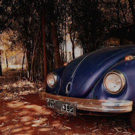 #vintage #beetle #classicfeel by Achuth Raj - Novices Only Objects & Still Life ( car, feel, old, vintage, automobile, vehicle, beetle, classic )