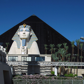Guarding the Luxor by Donna Neal - Buildings & Architecture Statues & Monuments ( las vegas, luxor, spinx )
