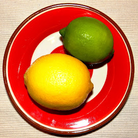 lemons and limes by Dubravka Penzić - Food & Drink Fruits & Vegetables (  )
