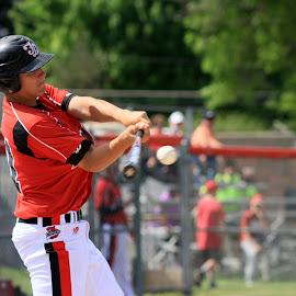 it's a hit  by Dale Wooten - Sports & Fitness Baseball ( baseball, baseball player, bat, batter, athlete )