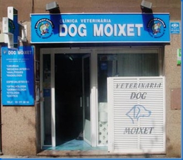 Dog Moixet