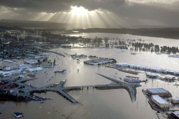dark roasted blend  floods
