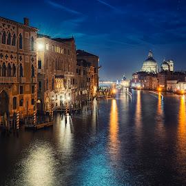 Venice by Miodrag Stojanovic - City,  Street & Park  Historic Districts ( academia bridge, veneto, venice, italy, south italy )