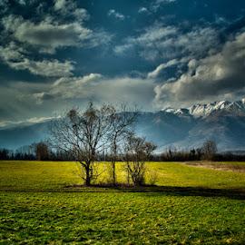 Prapiere by Luigi Esposito - Landscapes Prairies, Meadows & Fields ( clouds, grassland, mountains, tree, grass, trees, cloudscape )
