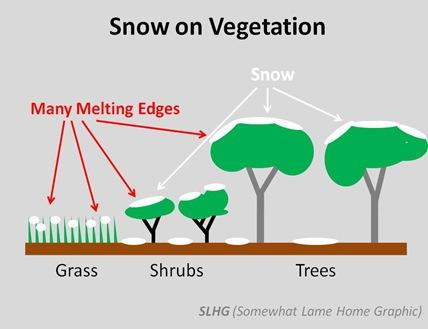 Snow on Vegetated Ground