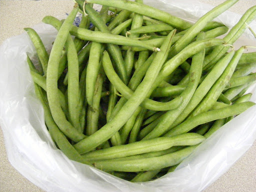 A pound of fresh green beans