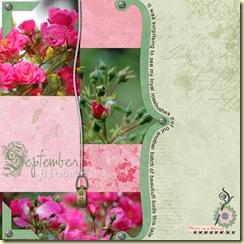 September-Bloom