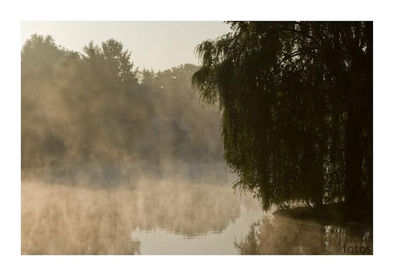 Etangs de Maransart - Brabant Wallon - Belgique - Anne-Sarine Limpens 2008