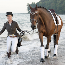 Training by Erik Kunddahl - Sports & Fitness Other Sports ( training, rider, equipage, sunset, woman, horse, beach )