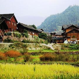 Kaili, historic village by Ilse Gibson - Buildings & Architecture Homes ( kaili, guizhou, ancient village, historic village, china,  )