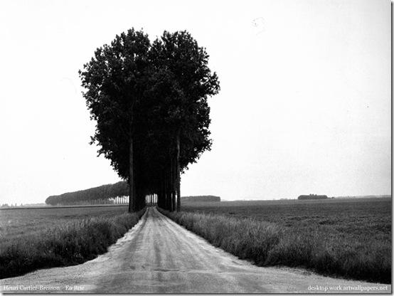 [Foto]Henri Cartier-Bresson En Brie
