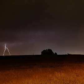 Forked Lightning by Kavori Huffman - Landscapes Weather ( lightning strike, strike, lightning, weather, storms, storm, nightscape,  )
