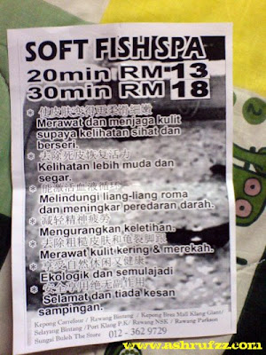 Soft Fish Spa Flyer