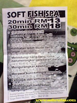 Soft Fish Spa Flyer