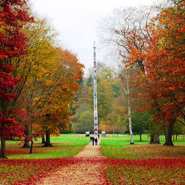 The Totem Pole in Autumn - Windsor Great Park by DTphotography Nikon Lumix - City,  Street & Park  City Parks ( totum pole, park, windsor great park, autumn, virginia water, , fall, color, colorful, nature )