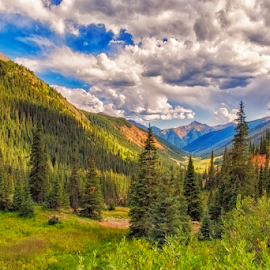 Mountain View by Michael Buffington - Landscapes Mountains & Hills ( hills, mountains, trees, valley )