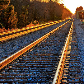 Cargill Tracks by Carol Plummer - Transportation Railway Tracks ( railway, sunset, train, transportation, tracks )