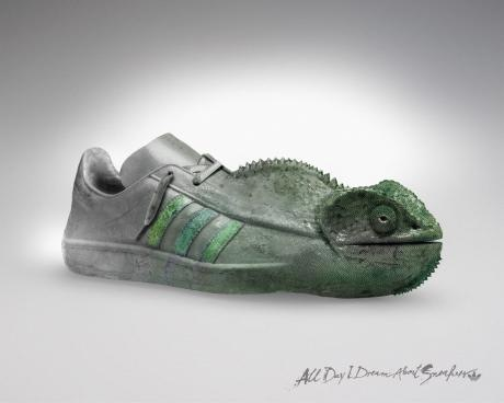 ADIDAS_CHAMELEON.preview