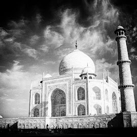 Taj Mahal - The Epitome of Love by Santanu Banerjee - Buildings & Architecture Public & Historical ( the epitome of love, taj mahal, architecture, historic, mogul )