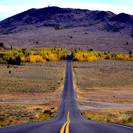 Road to Color by Brian Blood - Landscapes Mountains & Hills ( nowhere, mountains, autumn, sierras, road,  )