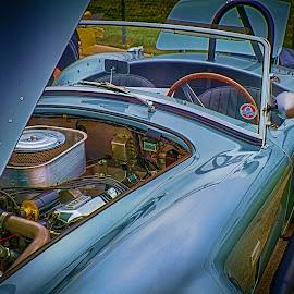 Cobra by Ron Meyers - Transportation Automobiles