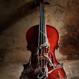 biola berdiri by Indra Prihantoro - Artistic Objects Musical Instruments ( music, musical instrument, artistic objects )