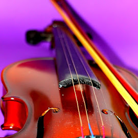 Violin by Terry Moffatt - Artistic Objects Musical Instruments ( musical instrument, violin )