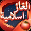 Download لعبة الألغاز الإسلامية APK for Android Kitkat