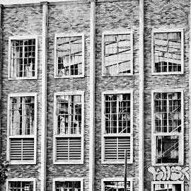 more windows by Magdalena Wysoczanska - Buildings & Architecture Other Exteriors ( walls, building, black and white, brick, windows, square,  )