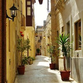 by Wojtylak Maria - City,  Street & Park  Historic Districts ( malta, street, old town )