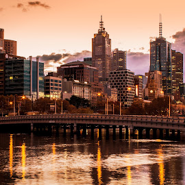 Melbourne Morning by Matt Simner - City,  Street & Park  Skylines ( queens bridge, yarra river, melbourne, southbank, sunrise )