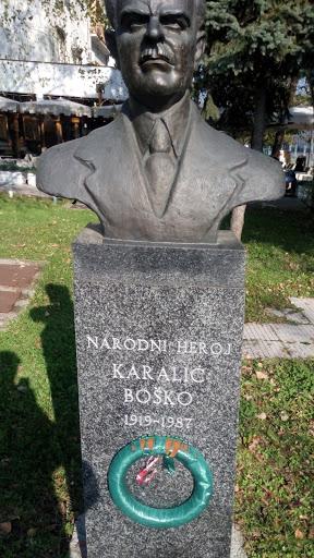 Bista Karalic Bosko