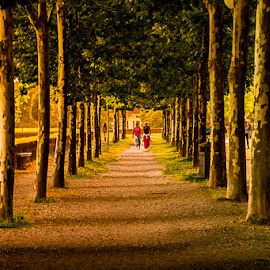 Evening in Lucca by Terry Hanna - City,  Street & Park  Street Scenes ( walls, tuscany, lucca, evening, italy, people, dusk )