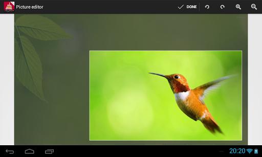 Photo Frames PRO - screenshot