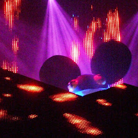 Big Ears by Cecilia Sterling - News & Events Entertainment ( techno, concert, rave, edm, trance )