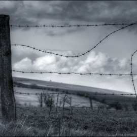 fenced by Tracy Bruzas - Landscapes Prairies, Meadows & Fields