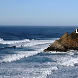 Heceta Head Lighthouse by Bill Waterman - Landscapes Beaches ( waves, lighthouse, ocean, beach, landscape )