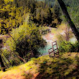best seat in the house by Leslie Hunziker - Landscapes Prairies, Meadows & Fields ( hillside, trees, field grasses, river,  )