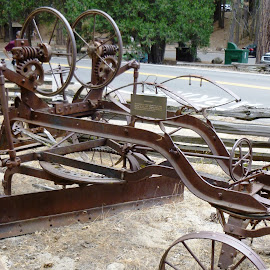 horse drawn road grader  by Holly Herrmann - Artistic Objects Antiques ( yosemite )