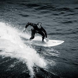 Veteran Shredding It in Cali by Darin Mellor - Sports & Fitness Surfing ( san diego, california, ocean, beach, san diego california )