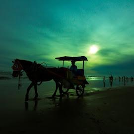 delman by Tyo Hujan - Transportation Other