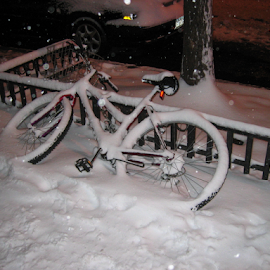 bike buried in the snow by Alec Halstead - Transportation Bicycles (  )